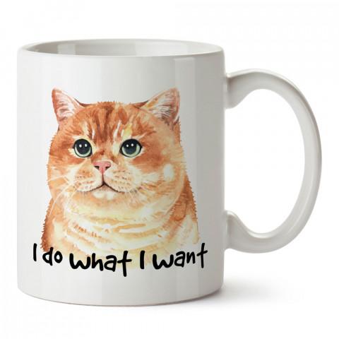 Ne İstersem Yaparım Kedi tasarım kupa bardak (mug). Kedi severler için hediye. Kedili kupa bardak. Hayvansevere ve kedi besleyenlere hediye.